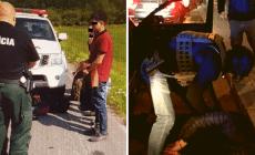 Policajti štyroch krajín vrátane Slovenska zastavili organizovanú skupinu prevádzačov imigrantov