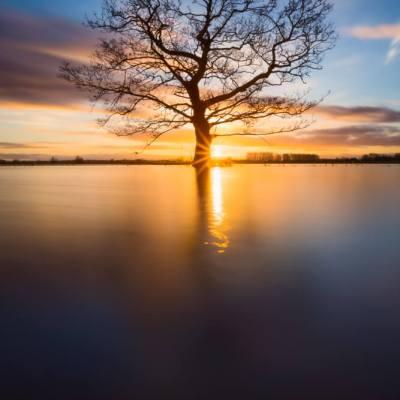 zonsopkomst uiterwaarden