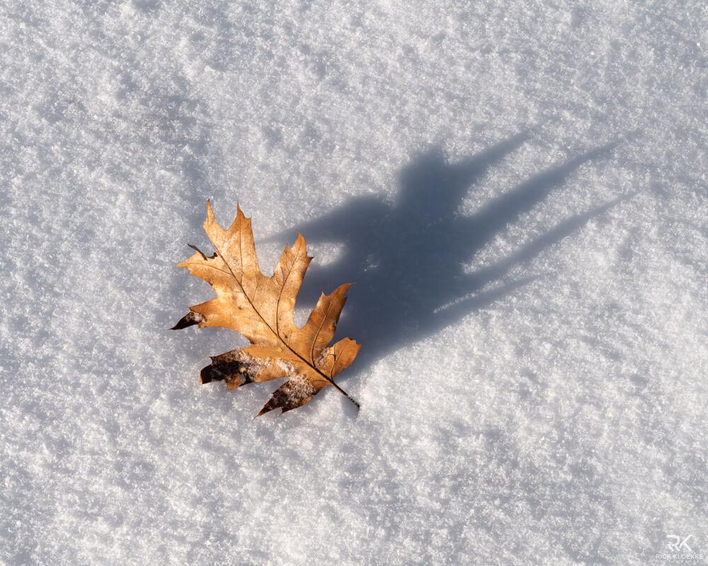 sneeuw detail
