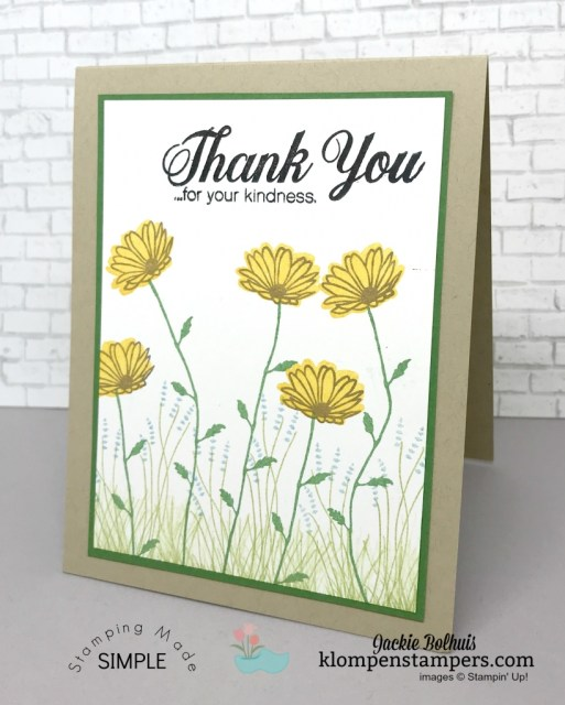 Tips for using Photopolymer stamps while using Daisy Delight stamp set.