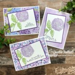 Stamped Greeting Cards You Can Make from Simple to Wow