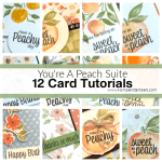 Online Card Class: Instructions to Make 12 Greeting Cards