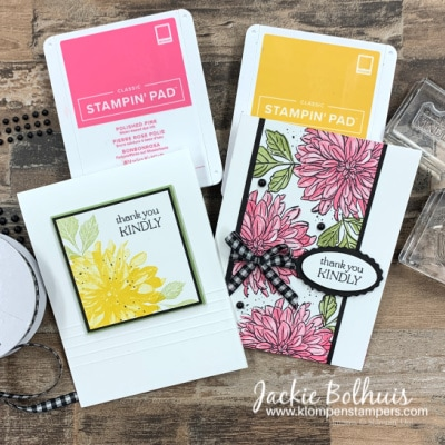 Make 2 Clean and Simple Cards That Are Knock-Out Gorgeous!