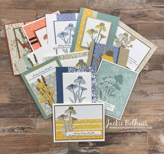 In-addition-to-the-DIY-Get-Well-Card-I-have-12-other-cards-with-Nature's-Harvest