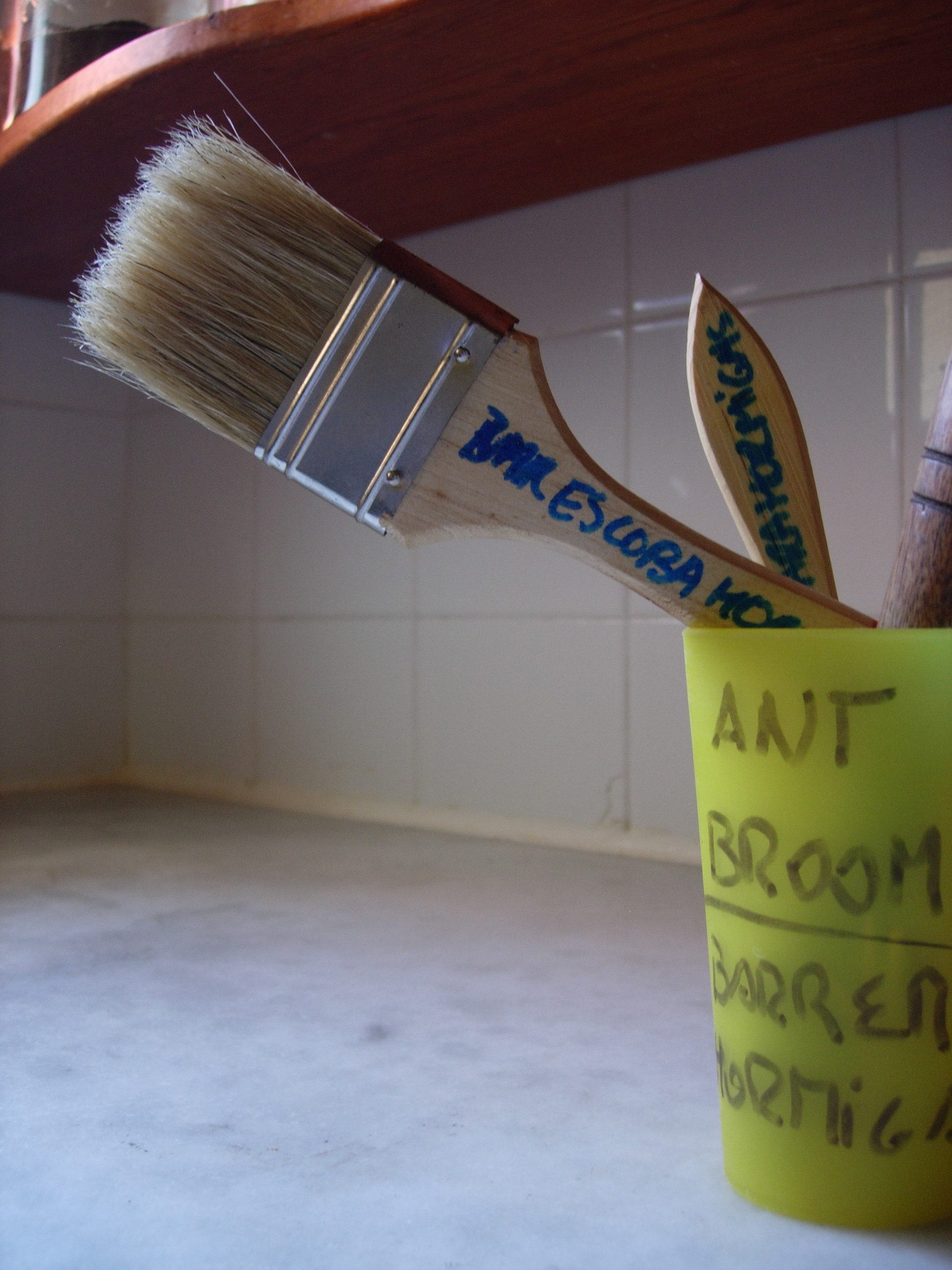 "Non-harming + pest control = ""Escoba de Hormigas"":  Ant Broom."