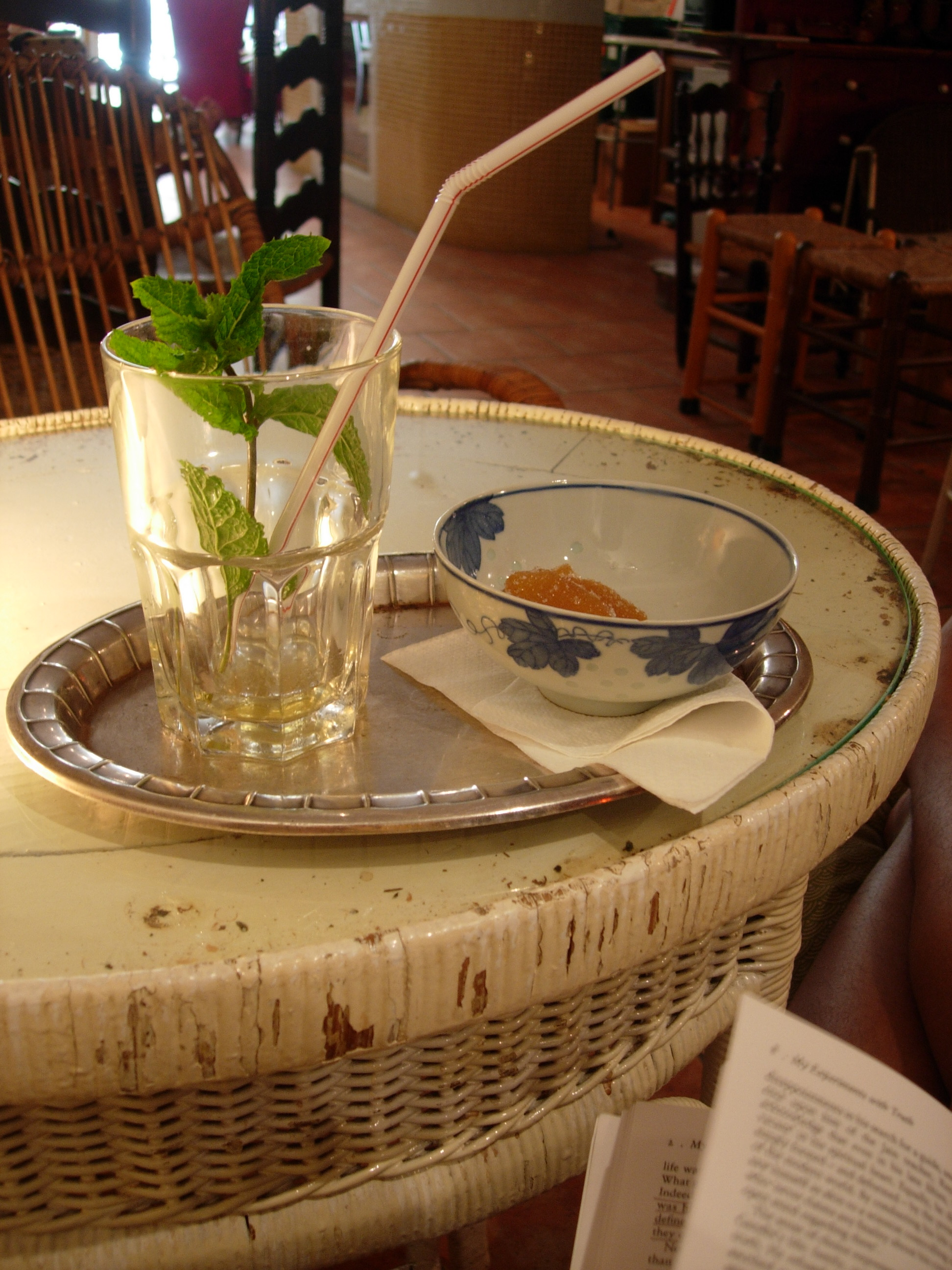 """Iced green tea with a mint sprig the size of a sapling. Little bowl of candied ginger. Gandhi's autibiography, """"My Experiments With Truth."""" A sparkling afternoon."""