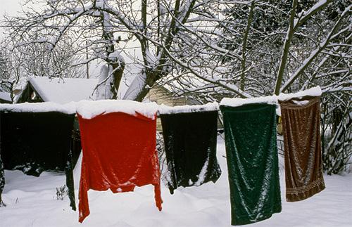 При какой температуре погибают вши и боятся ли они морозов?