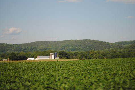 Rolling hills and green fields near my hometown in Pennsylvania