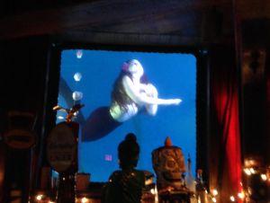 Mermaid Show at B Ocean via KLWightman.com