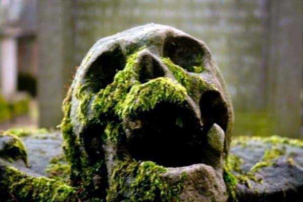 25 Morbidly Bizarre Cemetery Statues Klyker Com