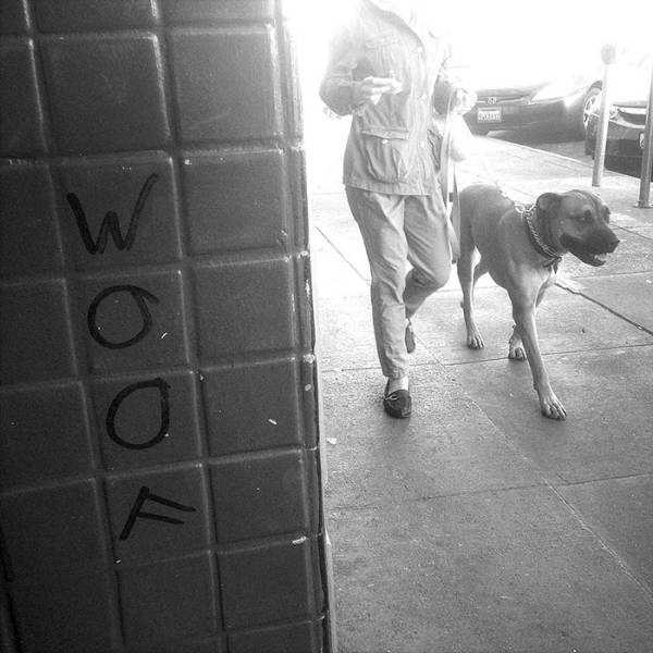 100 Street Photos Taken At The Best Possible Moment