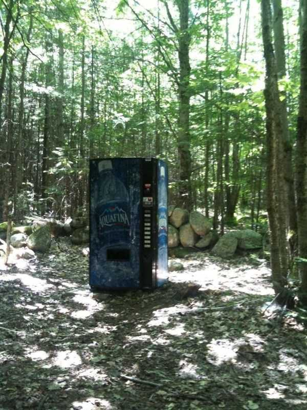 Wtf Things Found In The Woods Klyker Com