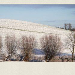 Bergfeld Klaber im Winter 2 - Impressionen