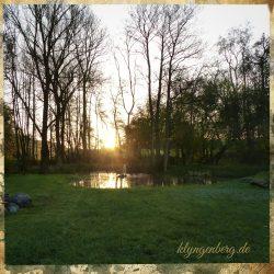 Garten Seminarhaus Klyngenberg 2 - Impressionen