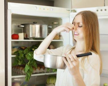 Из холодильника доносится вонючий и ужасный запах