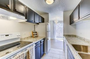 937 N Clarkson Street Unit 306-MLS_Size-013-8-13-1800x1200-72dpi