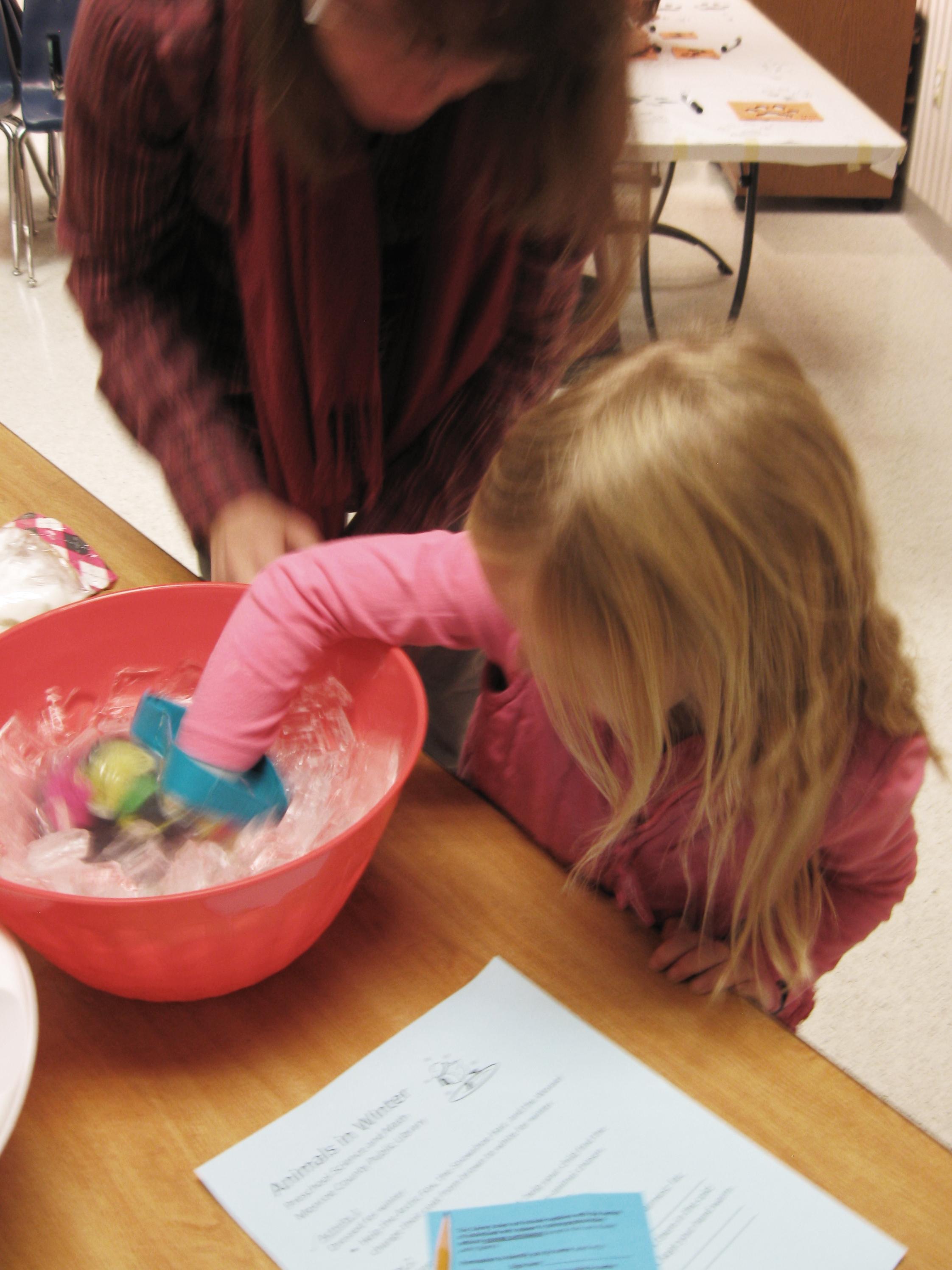 Preschool Science Animals In Winter Part Two