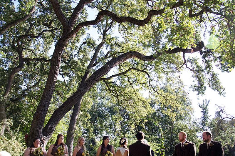 wedding-backyard-kmcnickle-photo-party