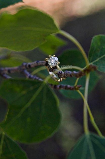 weddingring-birch-kmcnickle