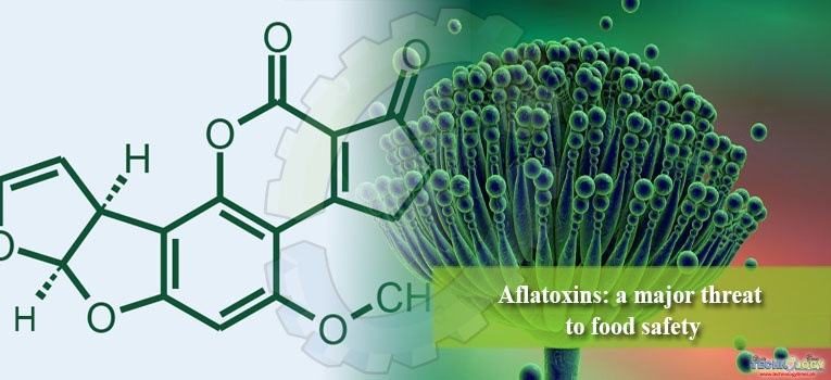 Scientific truth about Aflatoxins