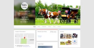 Frontier Equestrian | Jasper