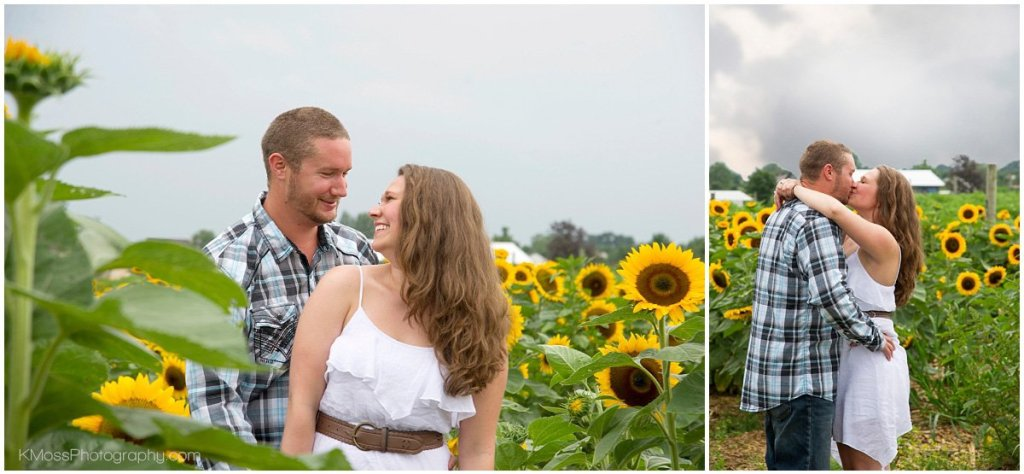 Lehigh Valley Sunflower Engagement Session | K. Moss Photography