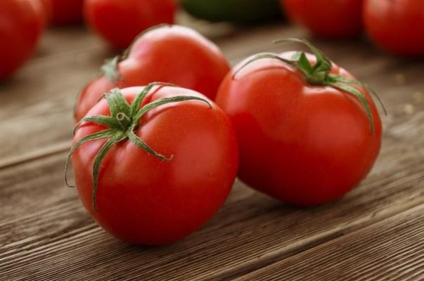 Sohati - الطماطم قبل النوم
