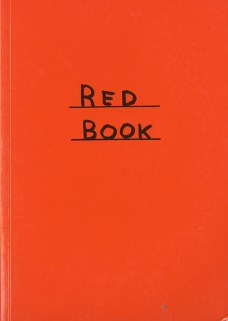 David Shrigley, Red book