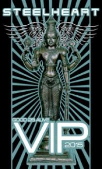 VIP PASSES 2015