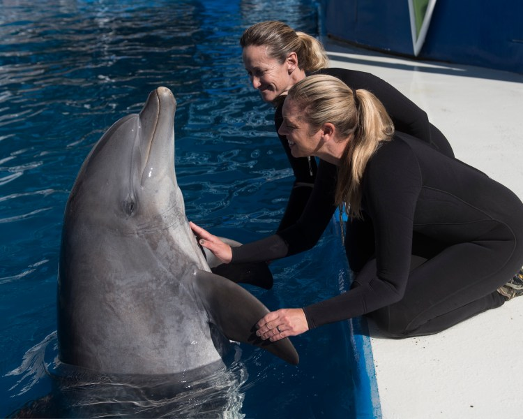 Meet Sandy and trainers Sephanie Jol and Tiffany Haskard (image credit: SeaWorld)