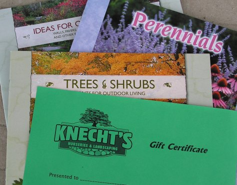 Knecht's Gift Certificate