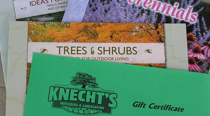Give Green with Knecht's Gift Certificates!