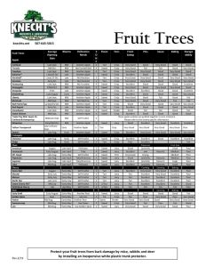 thumbnail of Knechts 2019 Fruit Tree Chart