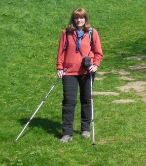 Walking after meniscal transplant