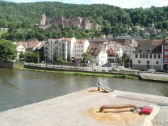 View over the river Neckar to the castle