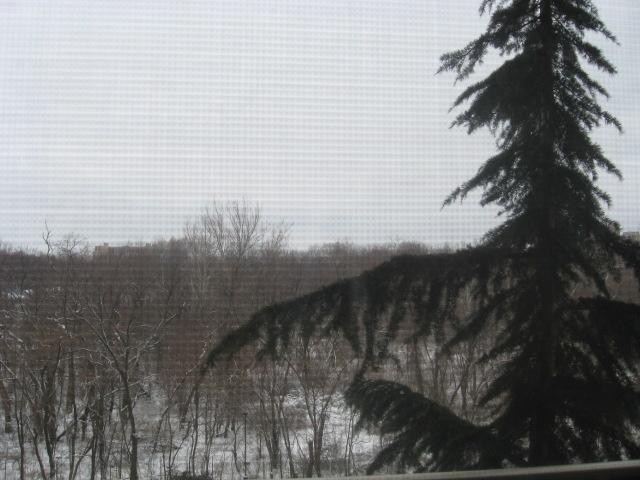 09_2nd-snow-001
