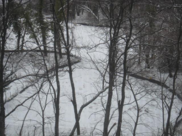 09_2nd-snow-004