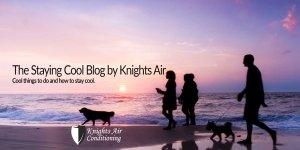 Blog - Riverview, Apollo Beach, Gibsonton, Ruskin