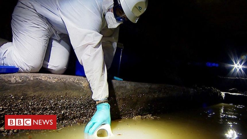 Coronavirus: Tracking new outbreaks in the sewers