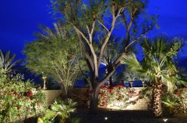 palm_springs_lighting_design_0469