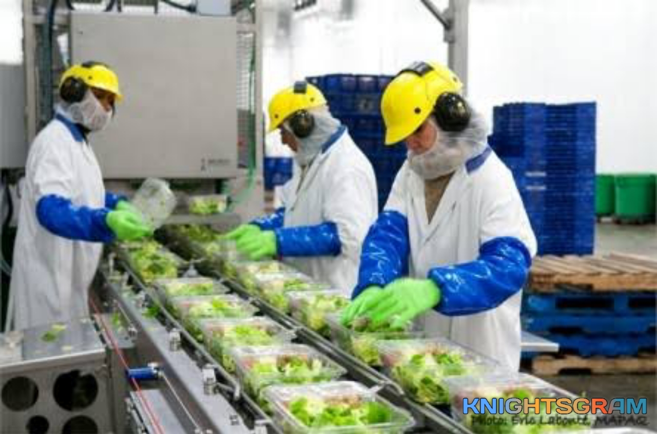 Toronto Fruit & Vegetable Warehouse Worker Wanted in Canada