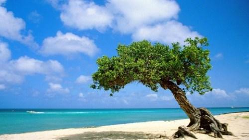 Facebookcharme: Aruba nota Financiën de begroting van 2014