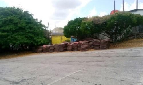 De wegkussentjes liggen nu onder een boom (bou'i palu) weg te rotten