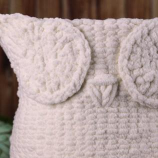 owl_bas_10