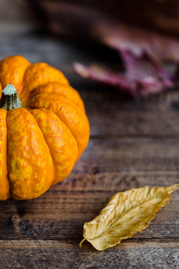 pumpkin-leaf-by-michaela-unsplash-683x1024