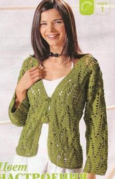 Зеленый жакет