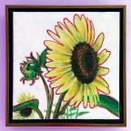 SunflowerSHOL