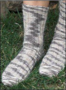 sakkie socks plymouth