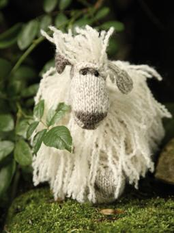 miranda sheep