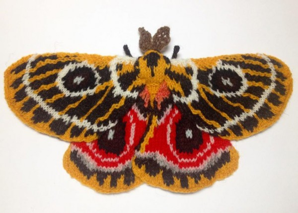 Check out these amazing knit moths!